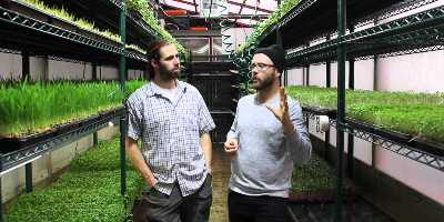 TSH - 106 - Urban Microgreens - Chris Thoreau